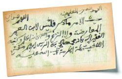 حسام عبدالعزيز مكاوي